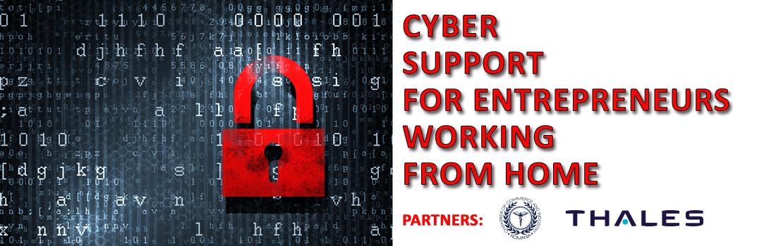 engleza-banner-suport-cibernetic