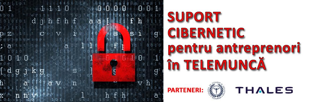 ok-banner-suport-cibernetic-telemunca
